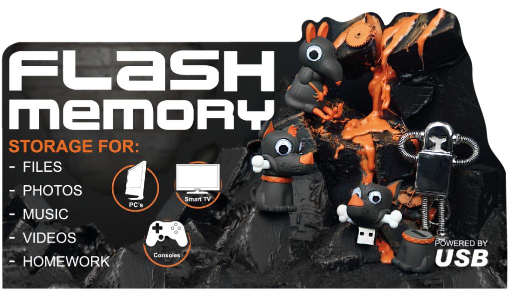 Flash Memory Top - FSDU