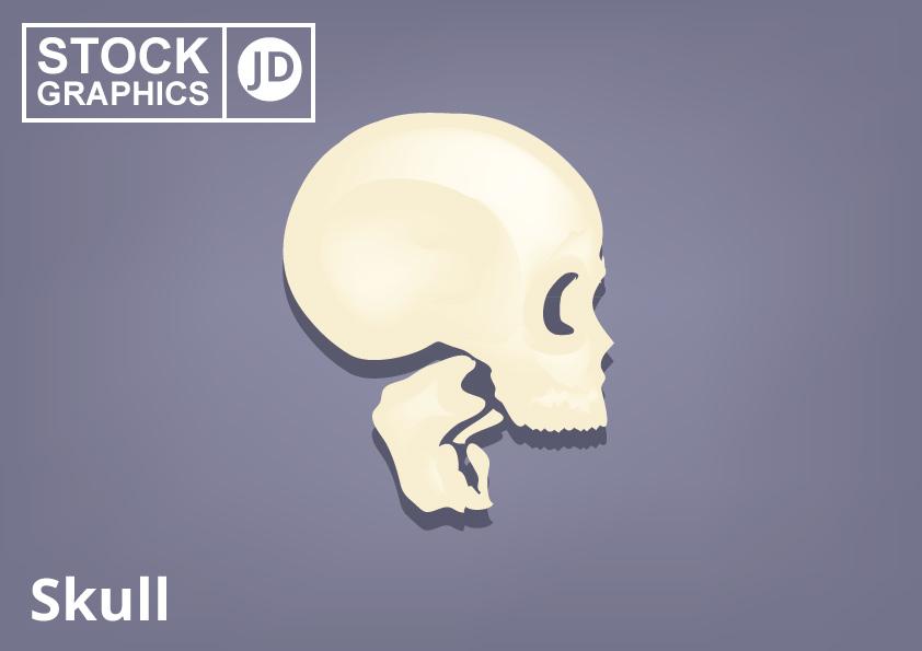 Free Stock Vector Skull